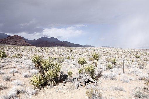 Desert, Cloudy Sky, Cloudy, Landscape, Nature, Scenic