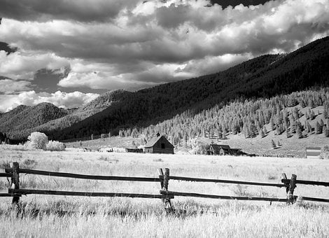 Farm, Agriculture, Wyoming, Usa, Fields, Fence, Forest
