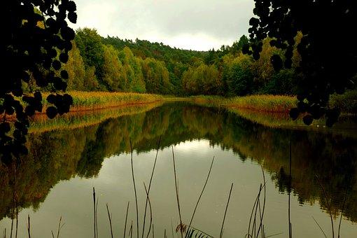Lake, Water, Calm Water, View, Mirroring, Rest