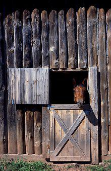 Horse Stable, Horse, Animal, Nature, Brown, Equestrian