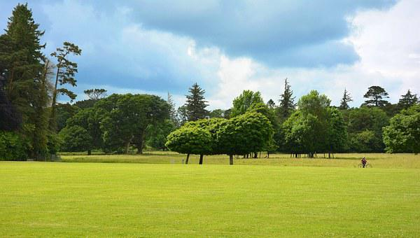 Park, Parklandschaft, English Garden, Green Area
