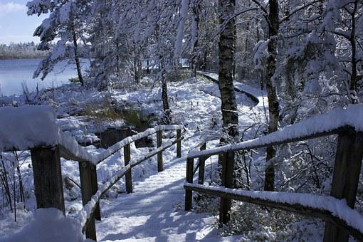 Bad Wurzach, Nature Reserve, Moor, Snow In Spring