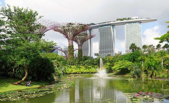 Singapore, Super Trees, Marina Bay Sands