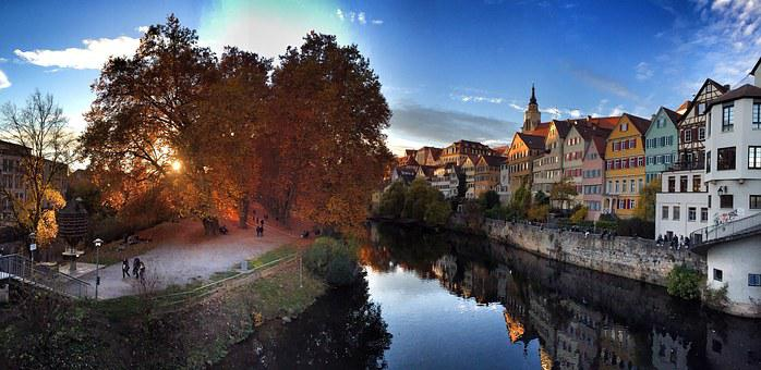 Autumn, Tübingen, Nature, Fall Leaves, Southern Germany