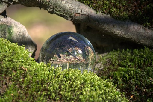 Globe Image, Forest, Moss, Glass Ball, Ball