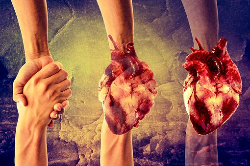 Hands, Wallpaper, Heart, Design, Photoshop