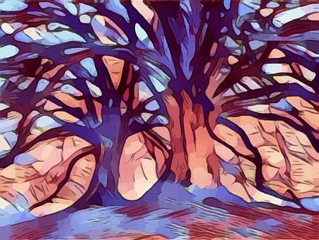 Trees, Branches, Abstract, Colors, Colorful, Design