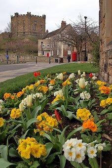 Durham, England, Castle, Flowers