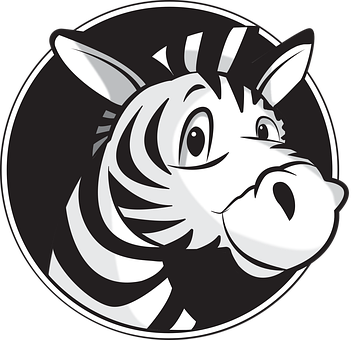 Zebra, Africa, Stripes, Safari, Nature, Animals