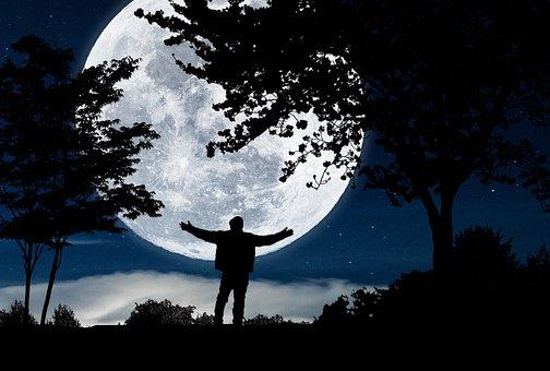 Moonlight, Moon, Night, Fullmoon, Love, Nature, Sky