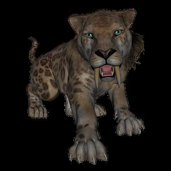 Saber Toothed Tiger, Saber Tooth, Tiger, Cat, Big Cat