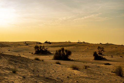 Al Qudra, Desert, Dubai, Sand, Uae