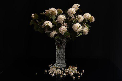 Bouquet, Still Life, Dark, Vase, Flowers, Birthday