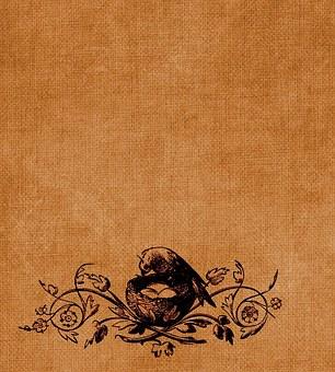 Vintage, Scrapbook, Background, Page, Bird, Nest