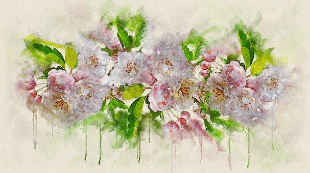 Flowers, Crabapple, Blossom, Garden