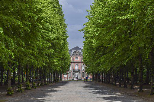Avenue, Trees, Away, Nature, Landscape, Park, Green