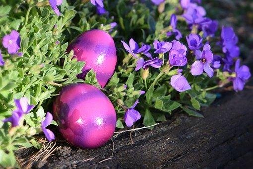 Easter, Easter Greeting, Easter Eggs, Purple