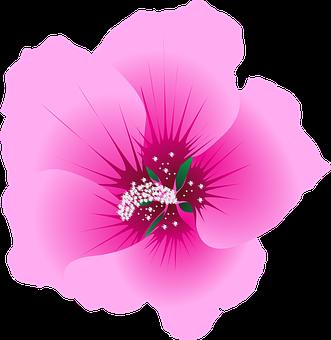 Flower, Garden, Green, Nature, Leaf, Floral, Plant