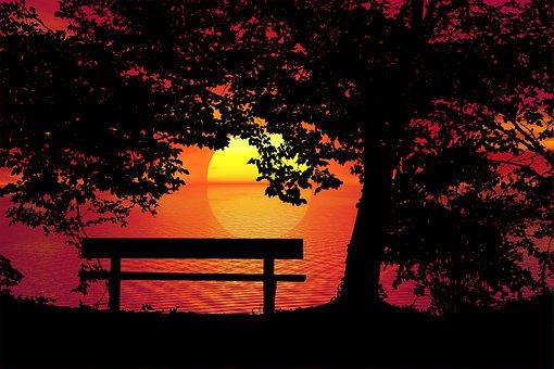 Sunset, Bench, Trees, Landscape, Solitude, Nature