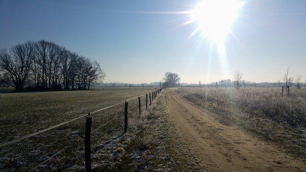 Germany, Brandenburg, Baruth, Light, Winter, Sun, Dawn