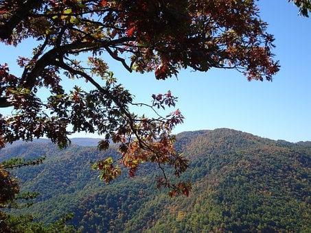 Blue Ridge Parkway, National Forest, Mountains, Nature