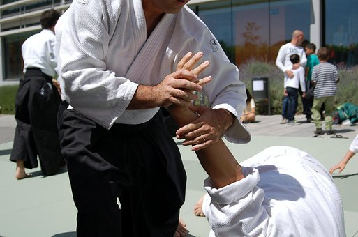 Martial Arts, Aikido, Sports, Sport, Sporting Event
