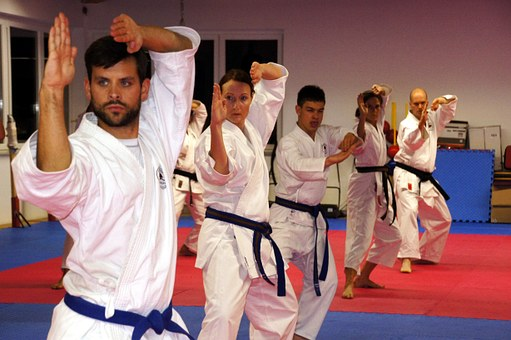 Karate, Martial Arts, Sport, Men, Leisure, Strong
