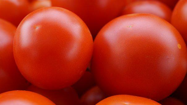 Tomatoes, Ripe, Food, Healthy, Frisch, Red