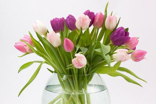 Tulip, Spring Flower, Bouquet, Schnittblume, Flower