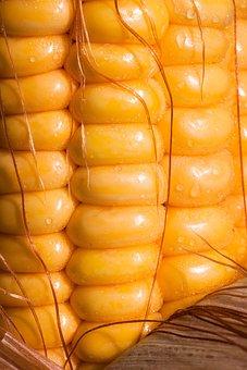 Corn, Corn Kernels, Corn On The Cob, Zea Mays, Cereals