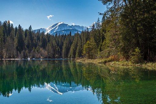 Lake Cresta, Lake, Water, Nature