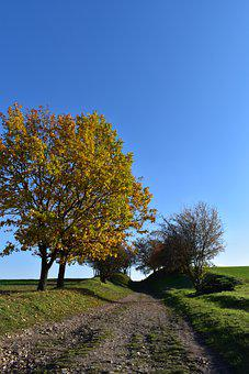 Autumn, Nature, Tree, Lane, Fields, Field, Leaves