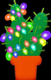 Christmas Cactus, Christmas Lights, Cactus, Cacti, Red