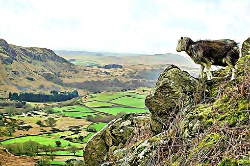 Eskdale, Herdwick, Landscape, Cumbria