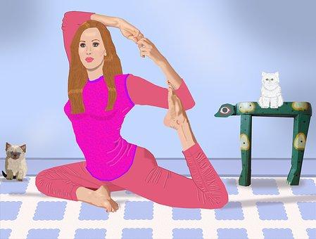 Woman, Exercising, Himalayan Kitten, Persian Kitten