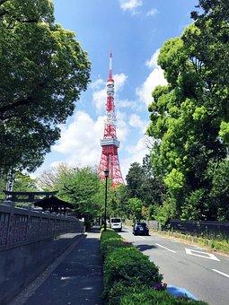 Tokyo Tower, Blue Sky, Woods, Path, Photo