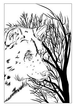 Wolf, Handdrawn, Design, Tree, Forest