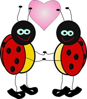 Ladybugs, Insect, Lady, Beetle, Holding Hands, Heart