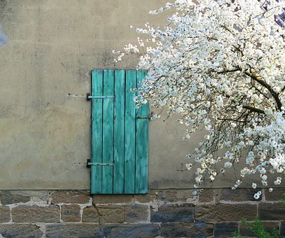 Cherry Blossom, Door, Green, Sand Stone, Barn, Building