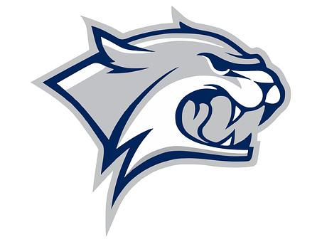 Wildcat, Head, Logo, Aggressive, Roaring, Snarling