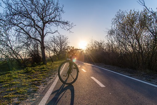 Sport, Bike, Cycling, Outdoors, Nature, The Trail, Path