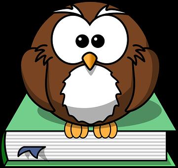 Book, Owl, Wisdom, Knowledge, Sit, Stare