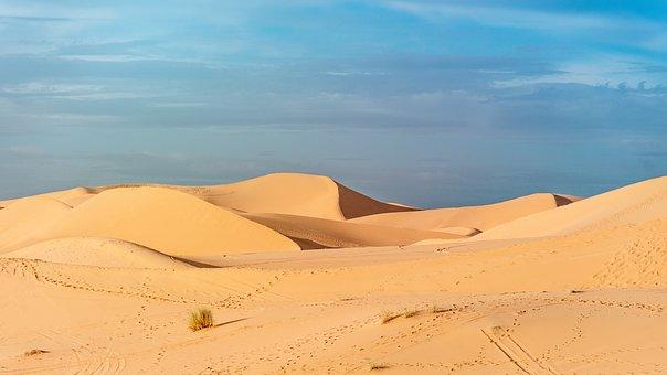 Desert, The Sand Dunes, Morocco, Sahara, Landscape
