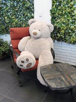 Bear, Teddy, Bears, Toys, Child, Toy