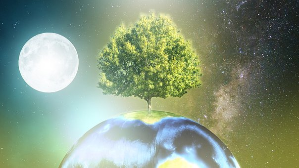 Earth, Precious, Trees, Imagination