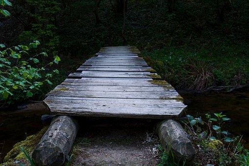 Bridge, Forest, Landscape, Nature, River
