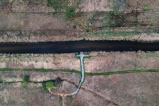 River, Field, Polyana, Symmetry