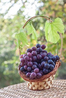 Grapes, Autumn, Harvest, Basket, Leaves