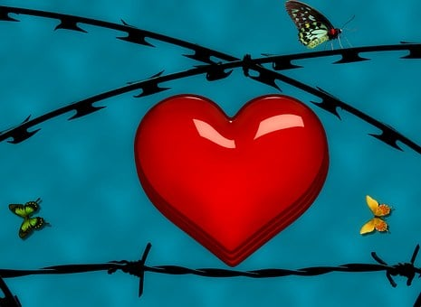 Heart, Butterfly, Barbed Wire, Red, Love, Freedom