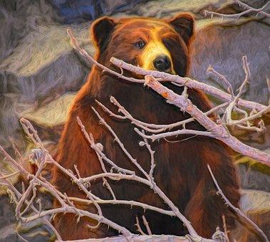 Art, Photo Art, Painting, Bear, Wildlife, Wild, Mammal